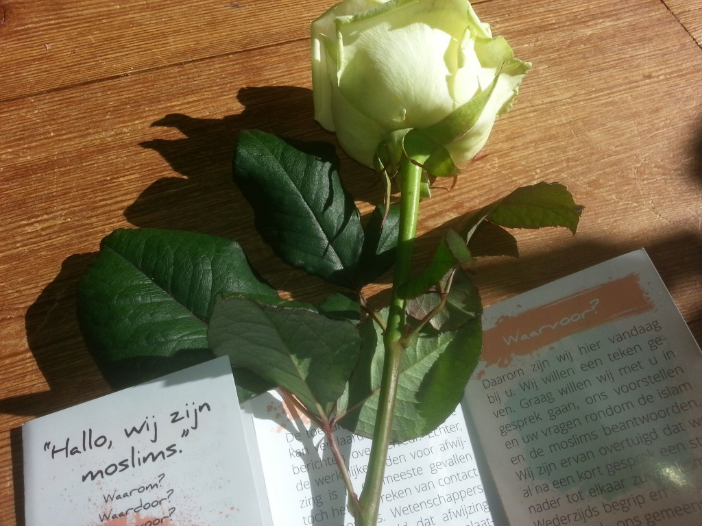Rose and leaflet handed out in the Netherlands